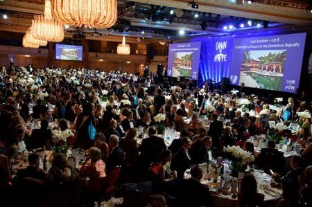 Enormous generosity: Gala Ball 2016