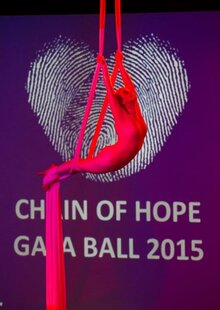 Vital funds raised at 13th Gala Ball